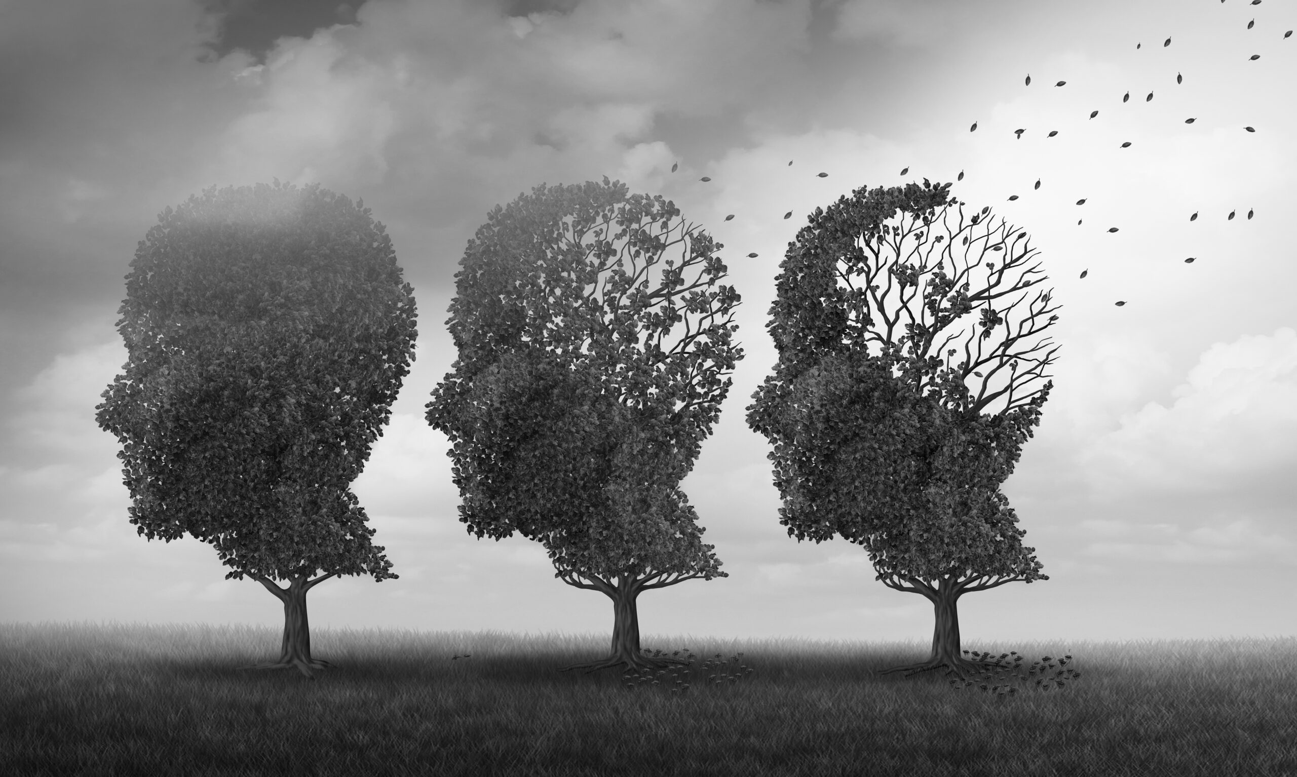 Easing the Burden of Dementia