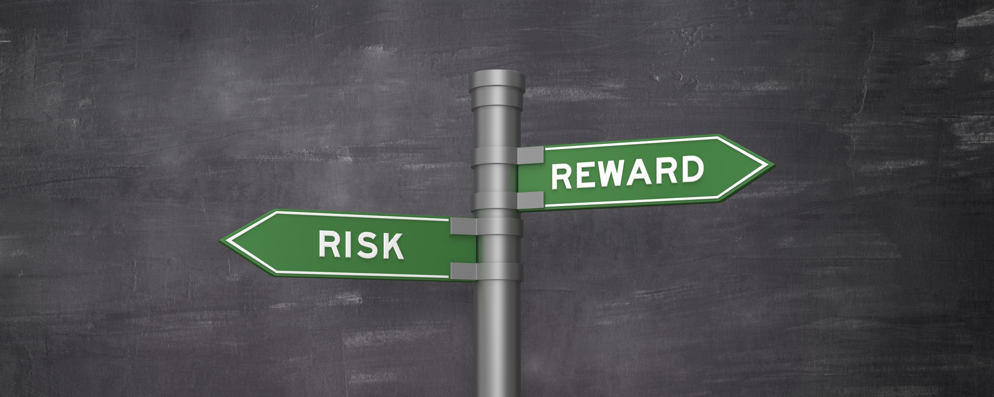 Our Relationship with Investment Risk